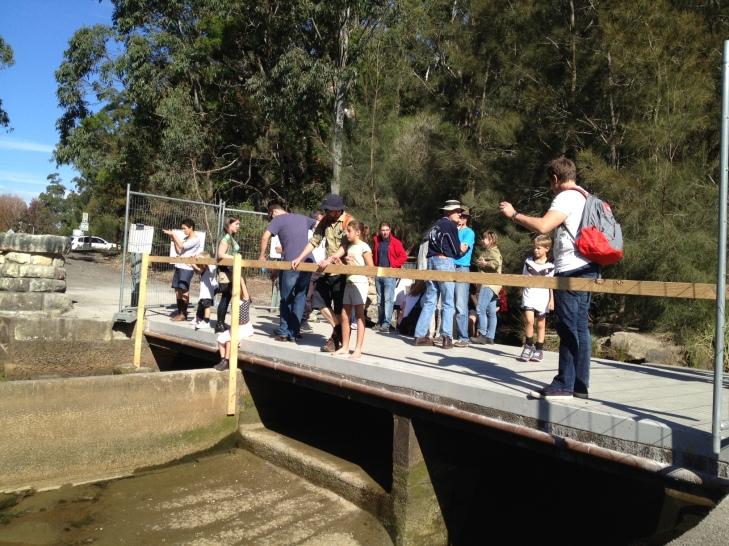 people inspecting Lane Cove fishway, (c) Scott Nichols