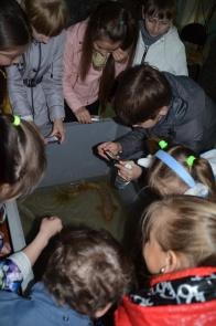 Visiting Amur Fish Museum_1