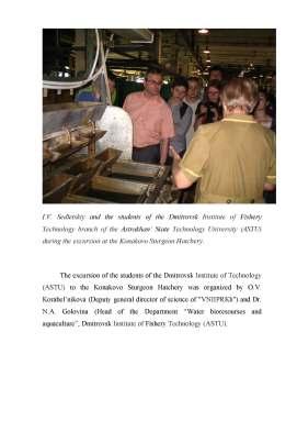 report pg3