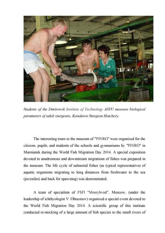 report pg5