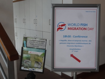 'Conference Aquarium La Rochelle May 19 (Cellule Migrateurs Charente Seudre and Aquarium La Rochelle).'