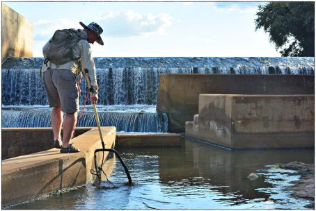 Dr Piet Kotze collecting some fish in the fishway.
