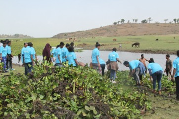 Participants removing water hyacinth by hand