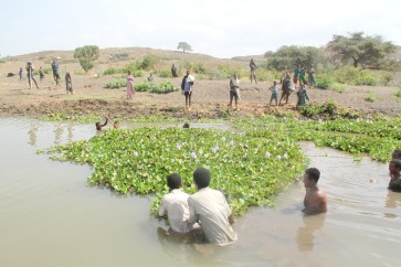 Removing water hyacinth using special net